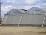 Селскостопанска мрежа за защита от тютюнев трипс