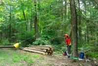 Лебедка за горски стопанства