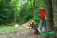 Лебедка за изтегляне на дърва