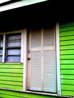 rivestimenti in verde