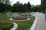 озеленяване на паркове и обществени градини