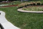 цялостно озеленяване на паркови пространства